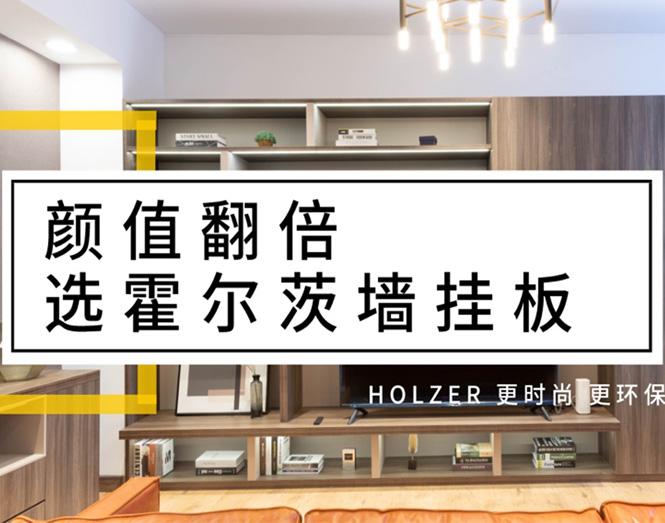 颜值翻倍,选霍尔茨墙挂板!